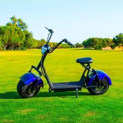 Citycoco (1) 1400W/12Ah Azul/Negro Moto Eléctrica Last Mille (III)